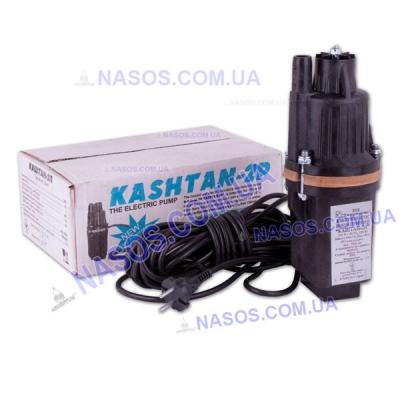Вибрационный насос Каштан-2П